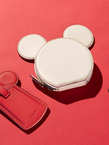 Disney Coach leather coin purse, bag tag and bracelet.