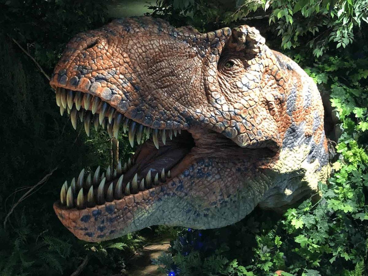 Henn na Hotel T-Rex by Joshua Meyer