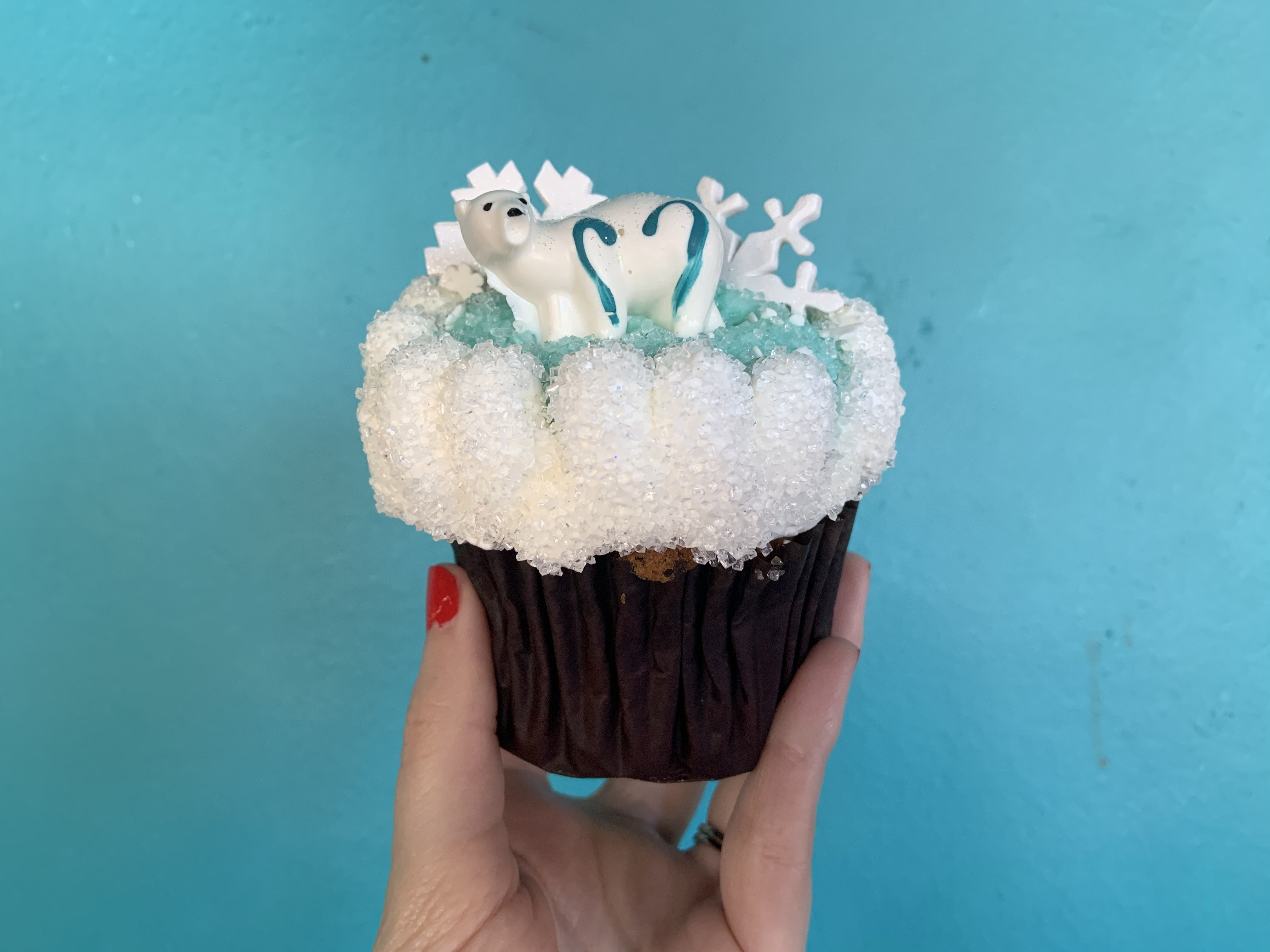 Merry Menagerie cupcake 12/7/19 13