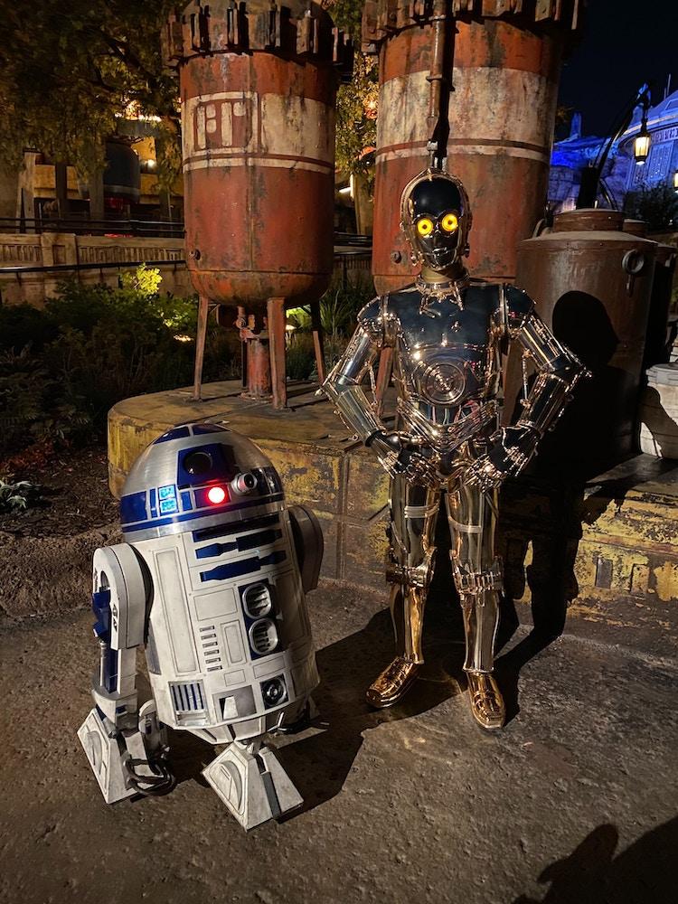 R2D2 and C3PO Disneyland After Dark: 80's Nite