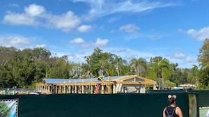 animal kingdom security construction