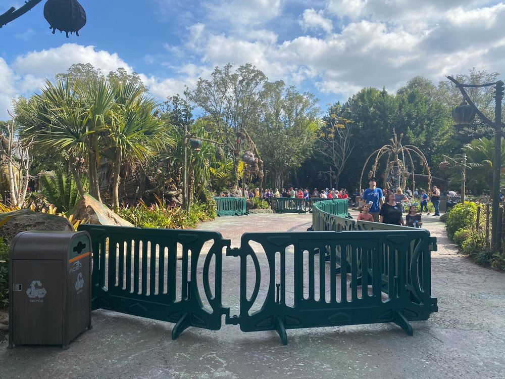 pandora refurb animal kingdom