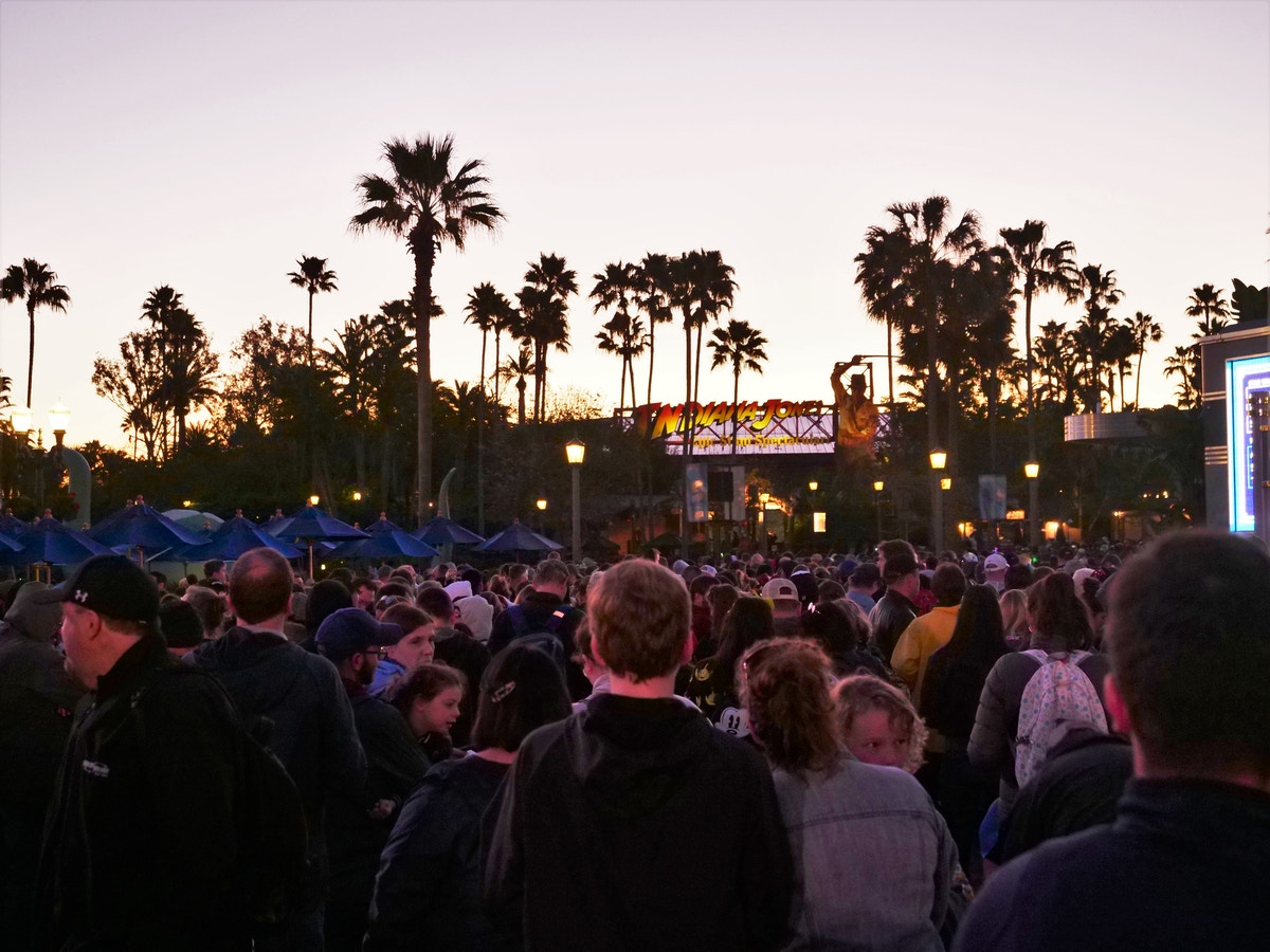 Disney's Hollywood Studios Crowds