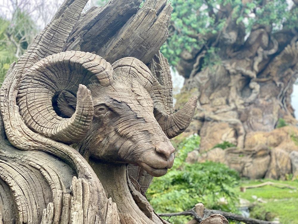 Ram tree of life animal kingdom