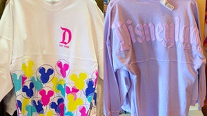 disneyland-spirit-jersey-collage-02-23-2020.jpg