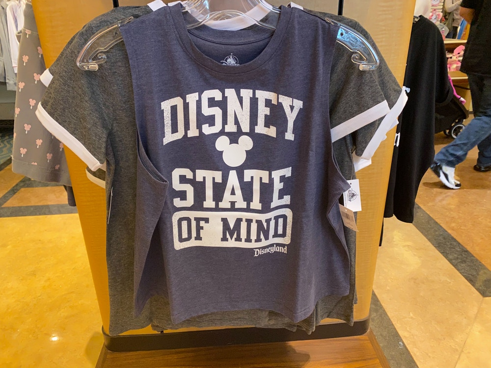 fun-day-disney-state-happiest-snacks-shirts-disneyland-02-23-2020-5.jpg