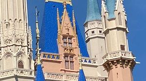 WDW Castle Paint