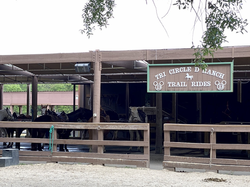 """Tri cirlce d ranch trail rides """"width ="""" 1000 """"height ="""" 750 """"data-lazy-src ="""" https://wdwnt-buzzy.imgix.net/2020 /03/TricircleD.jpg?auto=compress%2Cformat&fit=scale&h=750&ixlib=php-1.2.1&q=84&w=1000&wpsize=medium&is-pending-load=1 """"> <noscript> <img class="""